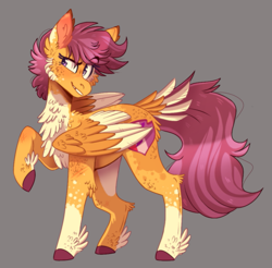 Size: 959x943 | Tagged: safe, artist:wanderingpegasus, scootaloo, pegasus, pony, cheek fluff, chest fluff, cutie mark, dappled, ear fluff, feathered fetlocks, female, fluffy, leg fluff, mare, socks (coat marking), solo, tail feathers, two toned wings, wings