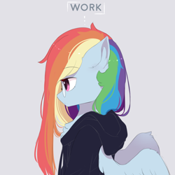 Size: 1000x1000 | Tagged: safe, artist:heddopen, rainbow dash, pegasus, chest fluff, clothes, ear fluff, female, glasses, hoodie, long mane, wings