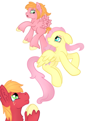 Size: 2059x2912 | Tagged: safe, artist:bewarethemusicman, big macintosh, fluttershy, oc, oc:little darlin', pony, crying, family, female, fluttermac, flying, flying lesson, liquid pride, male, offspring, parent:big macintosh, parent:fluttershy, parents:fluttermac, shipping, simple background, straight, teary eyes, white background