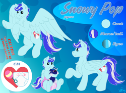 Size: 2960x2180 | Tagged: safe, artist:wittleskaj, oc, oc:midnight delight, oc:snowy pop, pegasus, pony, baby, baby pony, colt, diaper, flying, foal, male, plushie, reference, reference sheet, stallion