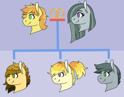 Size: 339x266 | Tagged: safe, artist:rainbowquasar, braeburn, marble pie, oc, oc:citrine, oc:mica, oc:mossy stone, earth pony, braeble, cropped, deviantart, family tree, female, male, married couple, offspring, parent:braeburn, parent:marble pie, parents:braeble, shipping, story included, straight