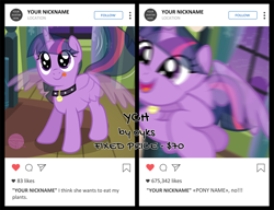 Size: 1500x1153 | Tagged: safe, artist:oyks, twilight sparkle, alicorn, pony, collar, commission, cute, instagram, pet tag, pony pet, tongue out, twiabetes, twilight sparkle (alicorn), ych example, your character here