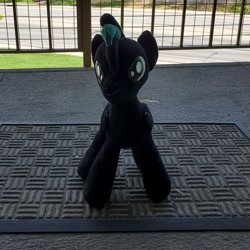 Size: 2475x2475   Tagged: safe, oc, oc:brony t pony, pegasus, pony, irl, male, photo, plushie, solo, stallion, teenager