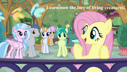 Size: 1280x720 | Tagged: safe, edit, edited screencap, screencap, end zone, fluttershy, sandbar, silverstream, slate sentiments, strawberry scoop, summer meadow, butterfly, marks for effort, cute, diastreamies, friendship student, jewelry, lord of the rings, lore of living creatures, necklace, sandabetes, school of friendship, shyabetes, slateabetes, speech, talking, the two towers, tolkien