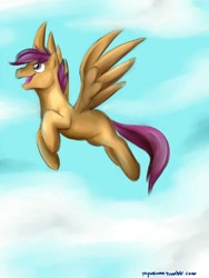 Size: 750x1000 | Tagged: artist needed, source needed, safe, scootaloo, pegasus, pony, cloud, flying, happy, scootaloo can fly, sky, solo