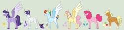 Size: 1280x310   Tagged: safe, artist:echabi, applejack, fluttershy, pinkie pie, rainbow dash, rarity, twilight sparkle, alicorn, pony, alternate design, mane six, twilight sparkle (alicorn), two toned wings, wings