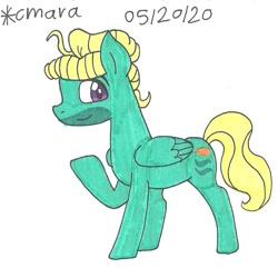 Size: 926x894   Tagged: safe, artist:cmara, zephyr breeze, pegasus, pony, male, solo, stallion, traditional art
