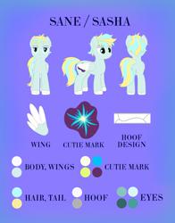 Size: 2792x3560 | Tagged: safe, artist:sane, oc, pegasus, pony, cutie mark, pegasus oc, reference sheet, wings