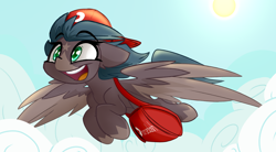 Size: 3000x1656 | Tagged: safe, artist:nekro-led, oc, oc only, oc:five star, pegasus, pony, bag, cap, cloud, courier, cute, delivery pony, female, flying, hat, mare, markings, open mouth, shading, solo