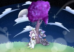 Size: 1280x902 | Tagged: safe, artist:irinamar, oc, oc only, alicorn, pegasus, pony, alicorn oc, cloud, cookie, deviantart watermark, food, full moon, horn, moon, night, obtrusive watermark, outdoors, pegasus oc, sitting, smiling, stars, tree, watermark, wings