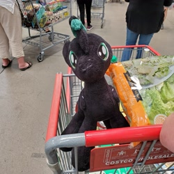 Size: 3024x3024 | Tagged: safe, oc, oc:brony t pony, pegasus, pony, costco, irl, male, photo, plushie, riding in shopping cart, shopping, shopping cart, teenager