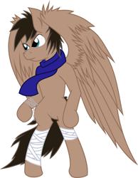 Size: 5898x7605   Tagged: safe, artist:nero-narmeril, oc, pegasus, pony, bipedal, male, simple background, solo, stallion, transparent background