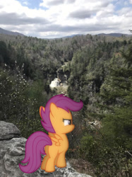 Size: 1242x1660 | Tagged: safe, photographer:undeadponysoldier, scootaloo, pegasus, pony, cliff, female, filly, irl, linville falls, majestic, majestic as fuck, nature, photo, ponies in real life, solo, water