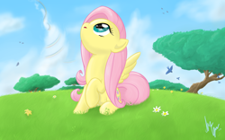 Size: 1920x1200 | Tagged: safe, artist:sameasusual, fluttershy, bird, pegasus, pony, cute, female, flower, implied rainbow dash, looking up, mare, rainbow trail, shyabetes, sitting, sky, solo