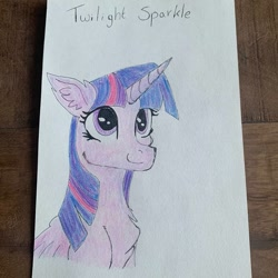 Size: 1080x1081 | Tagged: safe, alternate version, artist:_liz_art_, twilight sparkle, alicorn, pony, bust, chest fluff, ear fluff, female, mare, smiling, solo, text, traditional art, twilight sparkle (alicorn)