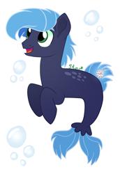 Size: 790x1148 | Tagged: safe, artist:star-gaze-pony, oc, oc:starry night, merpony, male, solo