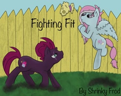Size: 2505x1986 | Tagged: safe, artist:snow quill, fizzlepop berrytwist, kerfuffle, tempest shadow, pegasus, pony, unicorn, amputee, broken horn, cover art, eye scar, fence, fighting stance, flying, horn, scar, story in the source