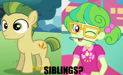 Size: 1664x1014 | Tagged: safe, edit, edited screencap, screencap, carrot crunch, stella sprinkles, crusaders of the lost mark, equestria girls, equestria girls series, tip toppings, spoiler:eqg series (season 2), braces, cropped, female, male, orthodontic headgear, possible relation
