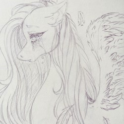Size: 1080x1080 | Tagged: safe, artist:mayguay, fluttershy, pegasus, pony, bust, crying, ear fluff, feather, female, floppy ears, lineart, looking at you, mare, monochrome, open mouth, profile, solo, spread wings, teary eyes, traditional art, wings