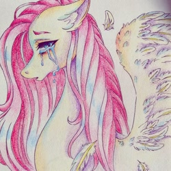 Size: 1080x1080 | Tagged: safe, alternate version, artist:mayguay, fluttershy, pegasus, pony, bust, colored, crying, ear fluff, feather, female, floppy ears, looking at you, mare, open mouth, profile, solo, spread wings, teary eyes, traditional art, wings