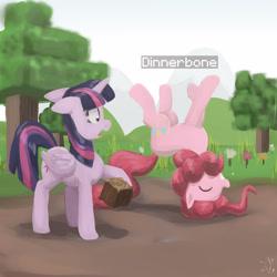 Size: 3000x3000 | Tagged: safe, artist:digiral, pinkie pie, twilight sparkle, alicorn, pony, box, minecraft, pinkie being pinkie, twilight sparkle (alicorn), upside down, wood