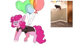 Size: 1263x788 | Tagged: safe, artist:amethesaladhair, pinkie pie, dog, earth pony, pony, balloon, comparison, floating, goggles, harness, irl, meme, photo, ponified meme, solo, then watch her balloons lift her up to the sky, vulgar description