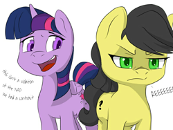 Size: 800x600 | Tagged: safe, twilight sparkle, oc, oc:anon, alicorn, earth pony, pony, anarcho-capitalism, dialogue, implied transformation, palette swap, recolor, reeee, twilight sparkle (alicorn)
