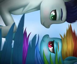 Size: 3600x3000   Tagged: safe, artist:sanroys, rainbow dash, soarin', pegasus, pony, blushing, falling, female, flying, lidded eyes, looking at each other, male, mare, shipping, sky, smiling, soarindash, stallion, straight, windswept mane