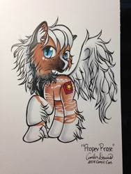 Size: 960x1280 | Tagged: safe, artist:sonicsweeti, oc, oc only, earth pony, pony, commission, cutie mark, simple background, traditional art, white background