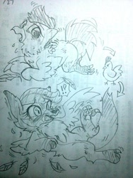 Size: 480x640   Tagged: safe, artist:kyubi, scootaloo, bird, chicken, fox, black and white, blushing, exclamation point, feather, grayscale, interrobang, monochrome, open mouth, pencil drawing, question mark, scootachicken, solo, sweat, sweatdrops, teary eyes, traditional art, transformation, winged fox