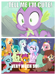 Size: 1212x1614 | Tagged: safe, edit, edited edit, edited screencap, screencap, amber grain, gallus, ocellus, sandbar, silverstream, smolder, snowy quartz, spike, yona, changedling, changeling, classical hippogriff, dragon, earth pony, griffon, hippogriff, pony, yak, a dog and pony show, a rockhoof and a hard place, bow, cheering, clapping, cloven hooves, colored hooves, cropped, cute, dialogue, diaocelles, diastreamies, dragoness, female, friendship student, gallabetes, hair bow, jewelry, malachite (sailor moon), male, monkey swings, necklace, sandabetes, school of friendship, smolderbetes, spikeabetes, teenager, yonadorable