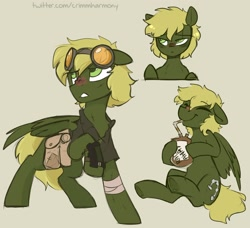 Size: 1560x1425 | Tagged: safe, artist:crimmharmony, oc, oc only, oc:murky, pegasus, pony, fallout equestria, fallout equestria: murky number seven, bag, bandage, fanfic art, goggles, male, pipbuck, radaway, saddle bag, simple background, stallion