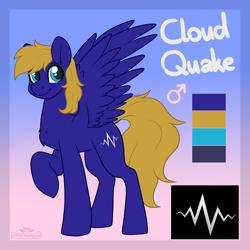 Size: 2000x2000   Tagged: safe, artist:dreamy, artist:littledreamycat, oc, oc:cloud quake, pegasus, male, patreon, patreon reward, reference sheet, stallion