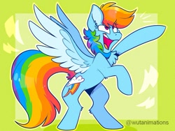 Size: 985x741 | Tagged: safe, artist:wutanimations, rainbow dash, pegasus, pony, abstract background, chest fluff, cute, dashabetes, female, mare, simple background, solo, spread wings, standing, wings