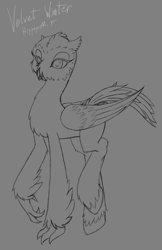 Size: 483x744 | Tagged: safe, artist:ravvij, oc, oc:velvet winter, bird, hippogriff, owl, pony, beak, bill, claws, cute, downey, feather, female, fluffy, hippogriff oc, hooves, mare, short ears, short feathers, short mane, sketch, snowy owl, solo, talons, wings