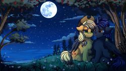 Size: 2920x1642 | Tagged: safe, artist:pridark, applejack, oc, alicorn, earth pony, original species, pony, alicorn oc, apple, apple tree, canon x oc, chest fluff, commission, cowboy hat, cute, duo, flower, full moon, hat, horn, moon, night, night sky, paws, scenery, scenery porn, sitting, sky, stars, stetson, tree, wings