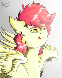 Size: 1064x1330 | Tagged: safe, artist:yuris, oc, oc only, pegasus, pony, male, solo