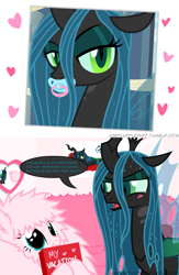 Size: 650x1000 | Tagged: safe, artist:mixermike622, edit, queen chrysalis, oc, oc:fluffle puff, changeling, changeling queen, earth pony, pony, a canterlot wedding, adorable distress, adorkable, angry, anxiety, awkward, blackmail, blushing, canon x oc, chrysipuff, crying, cute, cutealis, dork, dorkalis, duo, embarrassed, fangs, female, frown, happy, hyperventilating, immature, lesbian, looking at each other, mare, meme, nervous, obey, open mouth, pacifier, panic attack, scared, shipping, silly, silly pony, smiling, spoiled, standing, submissive, sweat, teary eyes, wings, worried