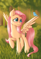 Size: 2893x4092 | Tagged: safe, artist:caulfieldsprice, fluttershy, bird, pegasus, pony, animal, blue eyes, blushing, cheek fluff, chest fluff, cute, ear fluff, female, forest, grass, head turn, high res, long mane, long tail, looking at someone, looking up, mare, outdoors, raised hoof, shyabetes, sitting on wing, smiling, spread wings, sunlight, tree, wings