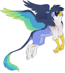 Size: 645x732 | Tagged: safe, artist:vindhov, oc, oc only, classical hippogriff, hippogriff, colored wings, commission, feathered fetlocks, flying, interspecies offspring, magical lesbian spawn, multicolored wings, offspring, parent:gilda, parent:rainbow dash, parents:gildash, realistic horse legs, simple background, solo, transparent background, wings