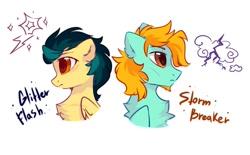 Size: 1105x685 | Tagged: safe, artist:mirtash, oc, oc only, pegasus, pony