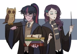 Size: 1802x1280 | Tagged: safe, artist:tcn1205, rarity, sci-twi, twilight sparkle, bird, owl, equestria girls, :o, alternate universe, animal, blushing, book, clothes, harry potter, hogwarts, necktie, open mouth, ravenclaw, robe, scarf, school uniform, scroll, wand, wide eyes