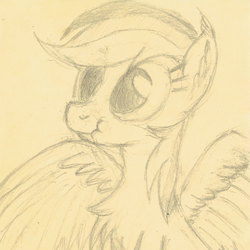 Size: 1047x1047 | Tagged: safe, artist:hotkinkajou, rainbow dash, pegasus, pony, behaving like a bird, chest fluff, ear fluff, female, mating dance, monochrome, pencil drawing, scrunchy face, simple background, solo, spread wings, traditional art, wings