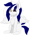 Size: 5426x6409 | Tagged: safe, alternate version, artist:skylarpalette, oc, oc only, oc:swift, pegasus, big ears, chest fluff, crying, fluffy, male, pegasus oc, pegasus wings, sad, scrunch, scrunched muzzle, simple background, simple shading, sitting, spread wings, stallion, transparent background, wings