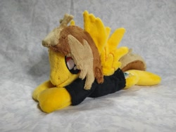 Size: 1032x774 | Tagged: safe, artist:bluedragonflyplush, pegasus, pony, alex gaskarth, all time low, beanie (plushie), clothes, commission, ear fluff, irl, male, photo, plushie, ponified, prone, shirt, solo, spread wings, stallion, t-shirt, wings