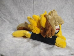 Size: 1032x774 | Tagged: safe, artist:bluedragonflyplush, pegasus, pony, alex gaskarth, all time low, beanie (plushie), clothes, commission, ear fluff, irl, male, photo, plushie, ponified, prone, shirt, solo, spread wings, stallion, t-shirt, tail feathers, wings