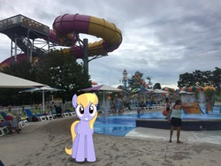 Size: 2049x1537 | Tagged: safe, artist:bluemeganium, artist:topsangtheman, cloud kicker, pegasus, pony, irl, looking at you, michigan, photo, ponies in real life, water park, water slide