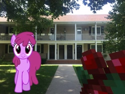 Size: 2049x1537 | Tagged: safe, artist:estories, artist:topsangtheman, berry punch, berryshine, sweet berry, earth pony, pony, house, irl, looking at you, minecraft, offscreen character, photo, ponies in real life, pov, tree