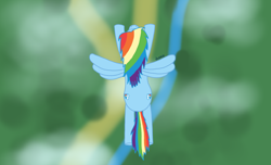 Size: 1976x1202 | Tagged: safe, artist:dzamie, rainbow dash, pegasus, colored, digital art, female, flying, mare, solo, top down