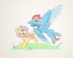 Size: 2500x2000 | Tagged: safe, artist:antimationyt, fluttershy, rainbow dash, pegasus, pony, chest fluff, duo, ear fluff, female, flying, folded wings, grin, looking at each other, mare, open mouth, outdoors, partial background, running, smiling, spread wings, wings